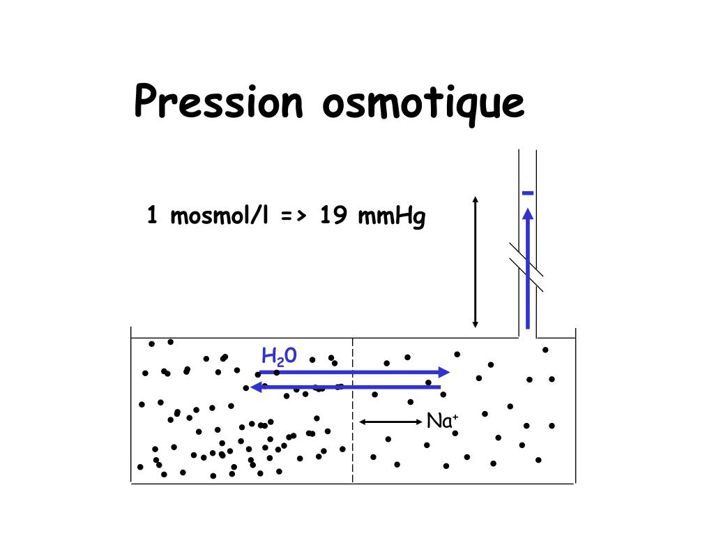 Pression osmotique
