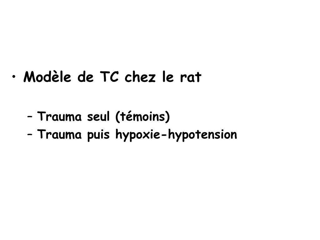 Modèle de TC chez le rat