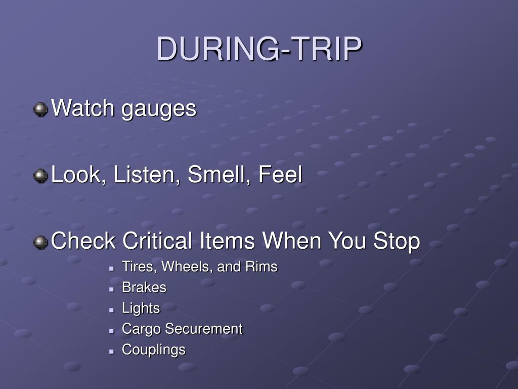 DURING-TRIP