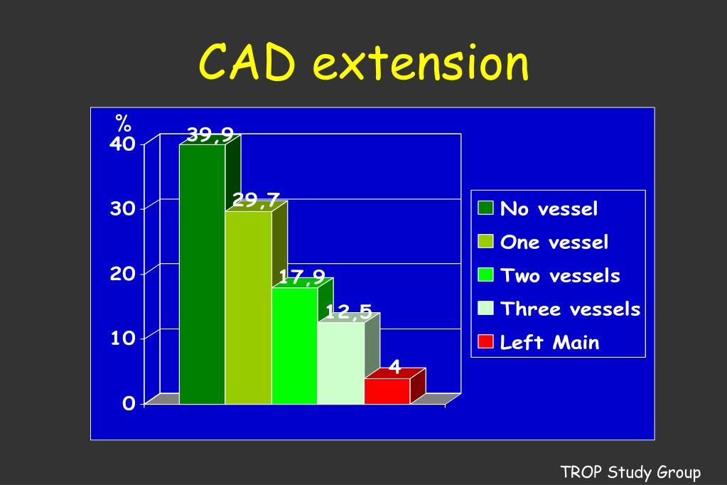 CAD extension