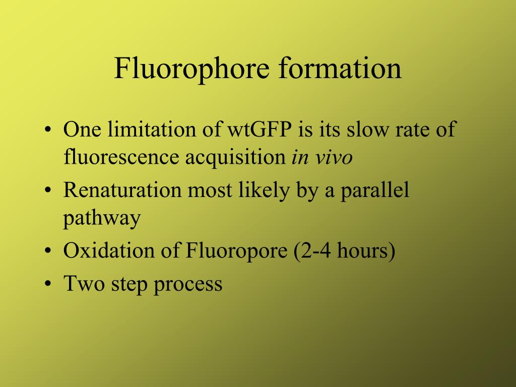 Fluorophore formation