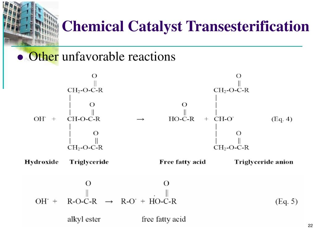 Chemical Catalyst Transesterification
