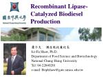 recombinant lipase catalyzed biodiesel production