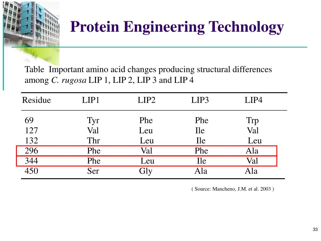 Table  Important amino acid changes producing structural differences among