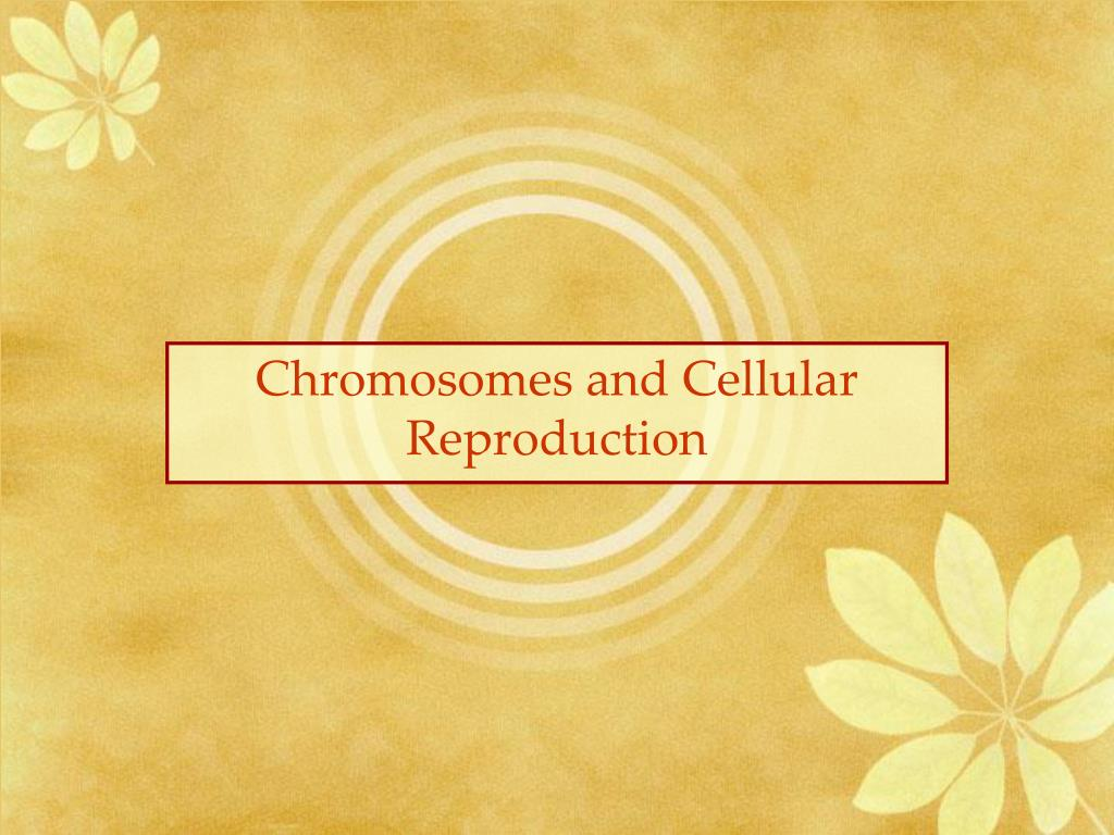 Chromosomes and Cellular Reproduction