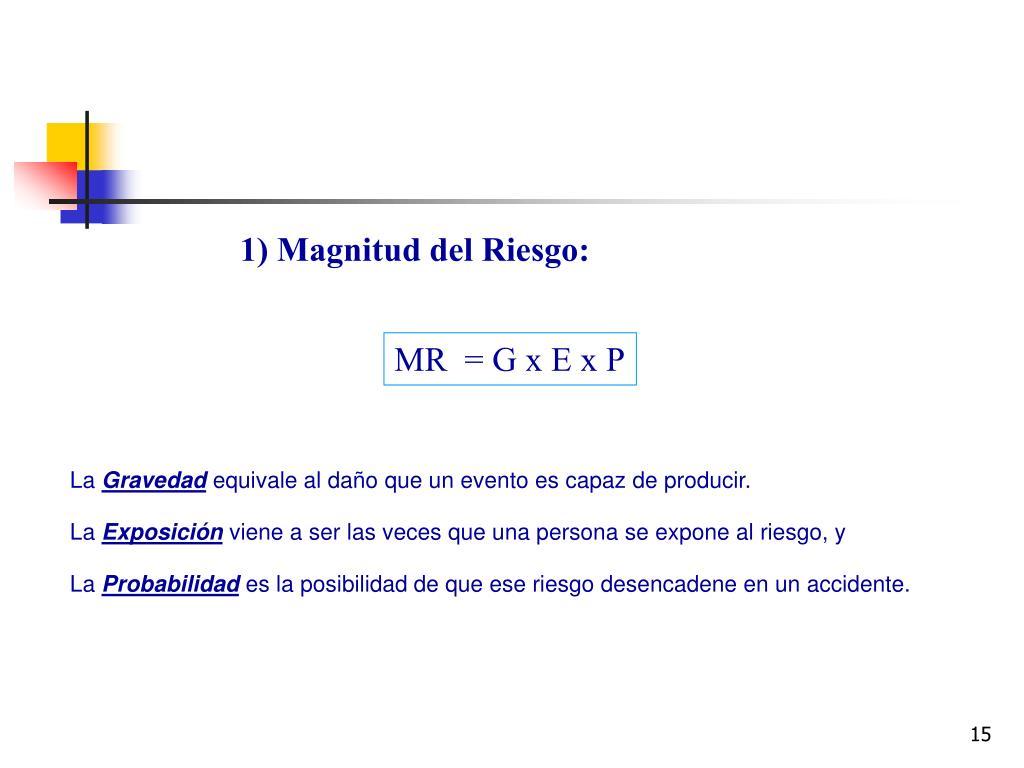 1) Magnitud del Riesgo: