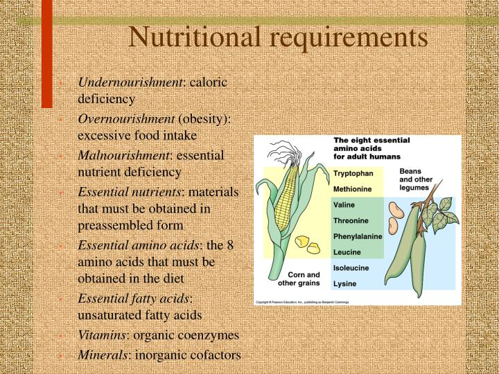 Nutritional requirements l.jpg