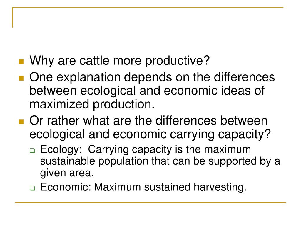 Why are cattle more productive?