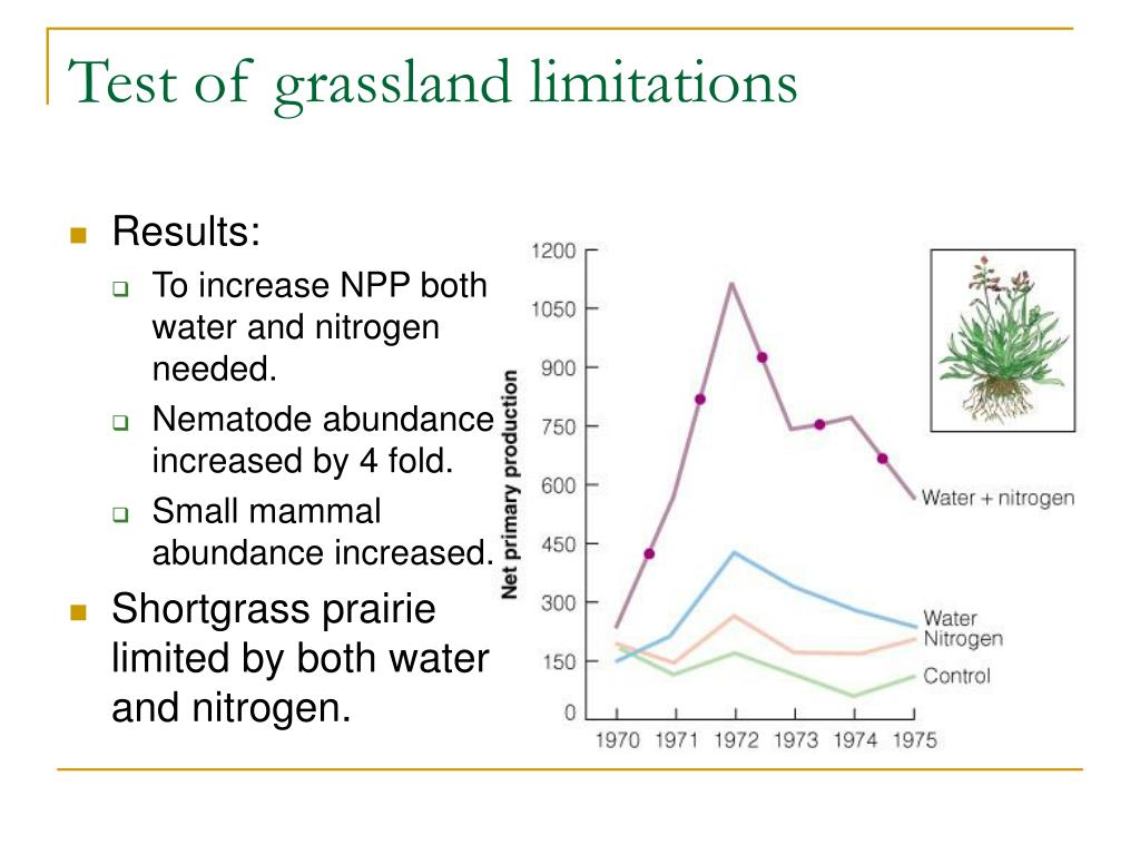 Test of grassland limitations