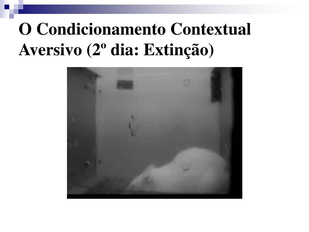 O Condicionamento Contextual Aversivo (2º dia: Extinção)