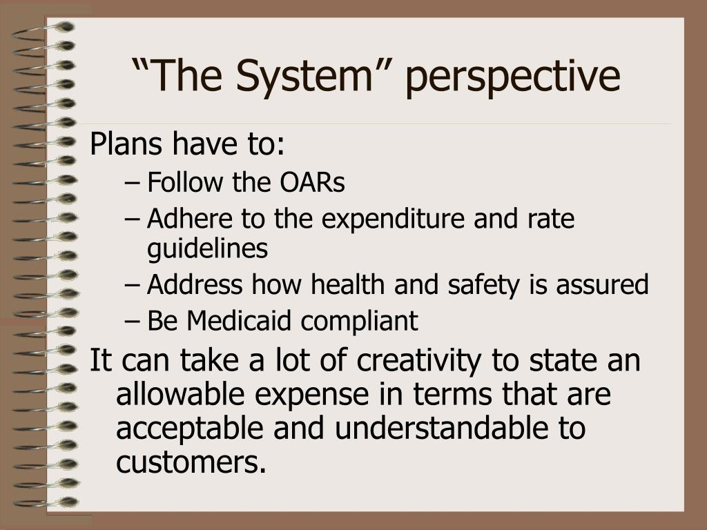 """""""The System"""" perspective"""