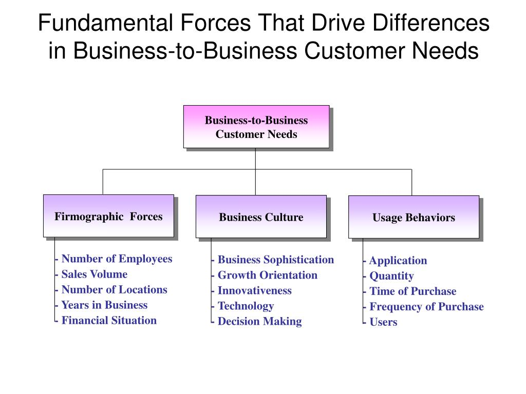 Business-to-Business Customer Needs
