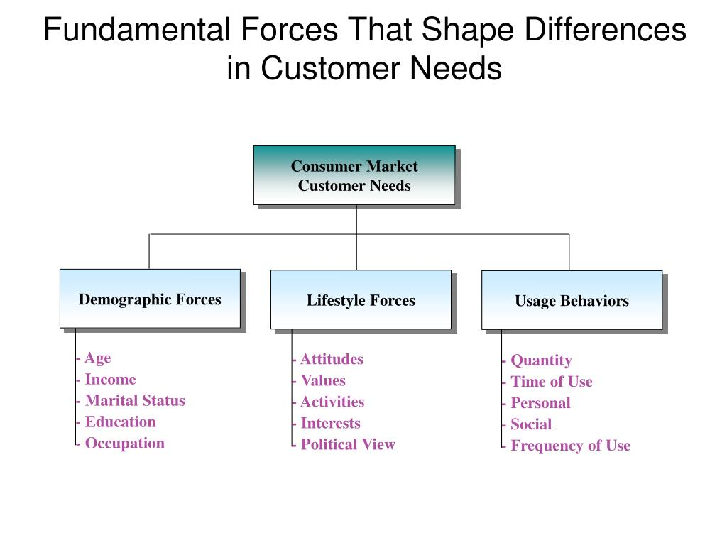 Consumer Market Customer Needs