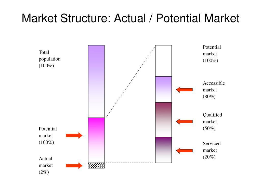 Potential market (100%)