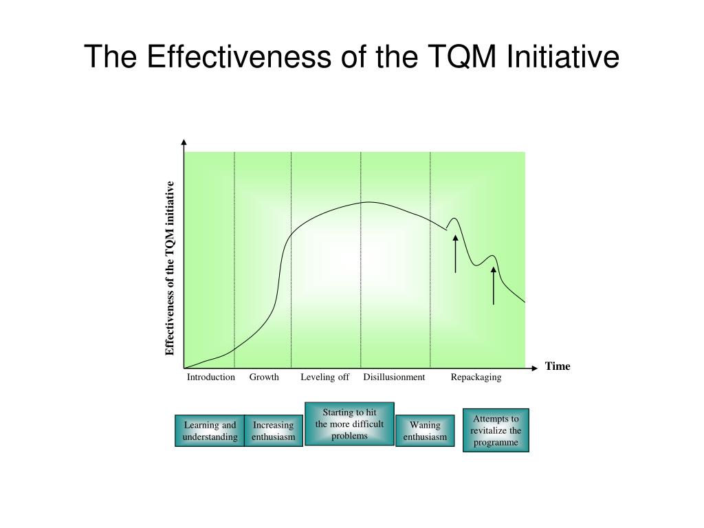 Effectiveness of the TQM initiative