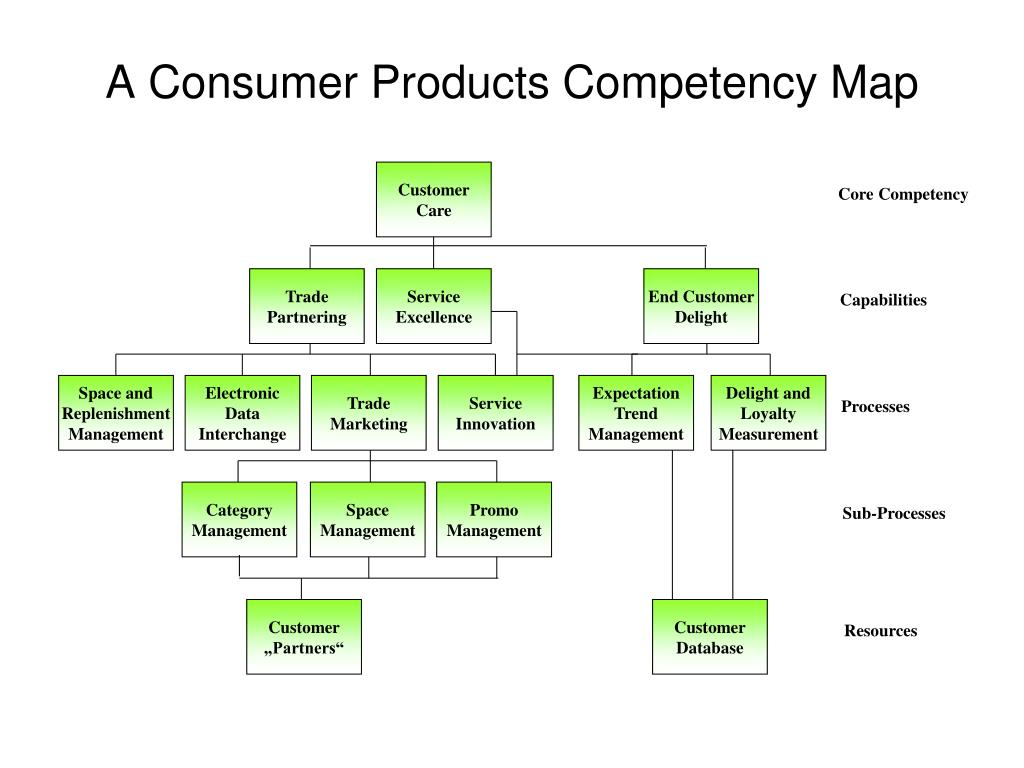 A Consumer Products Competency Map