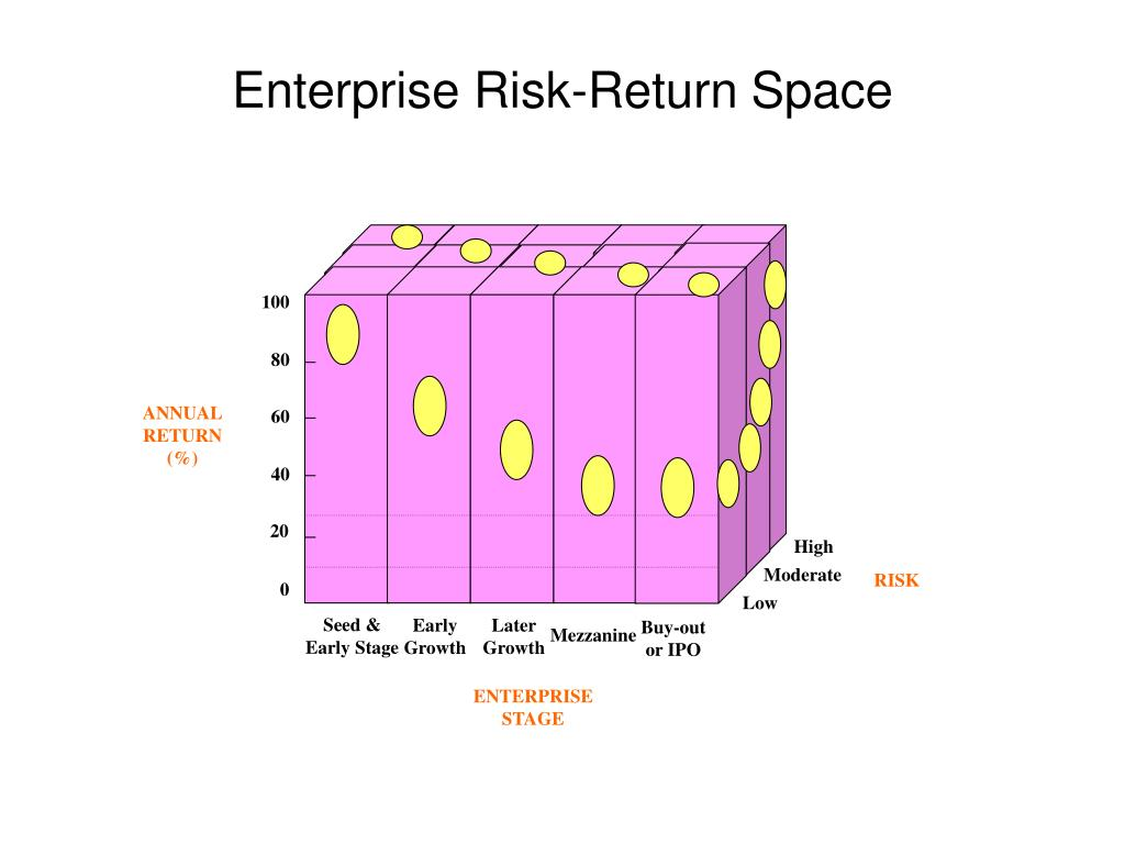 Enterprise Risk-Return Space