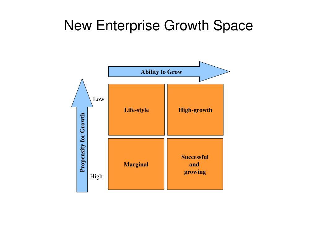 New Enterprise Growth Space