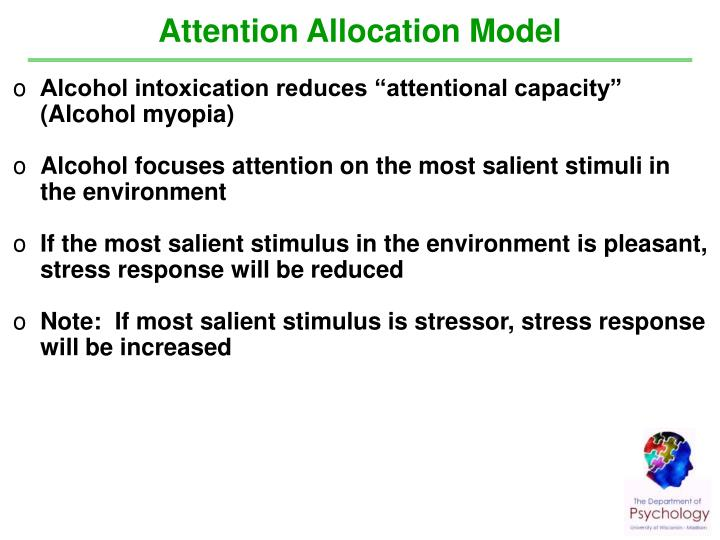 Attention Allocation Model