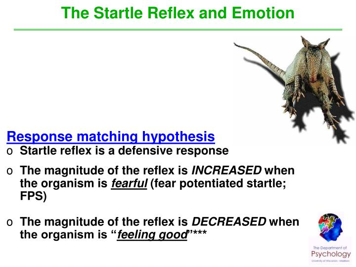 The Startle Reflex and Emotion