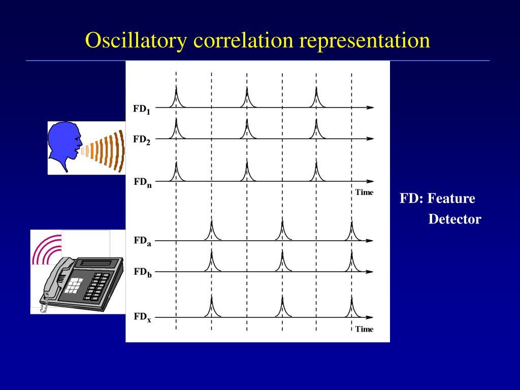Oscillatory correlation representation