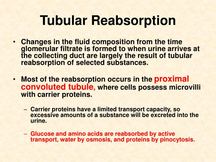 Tubular Reabsorption