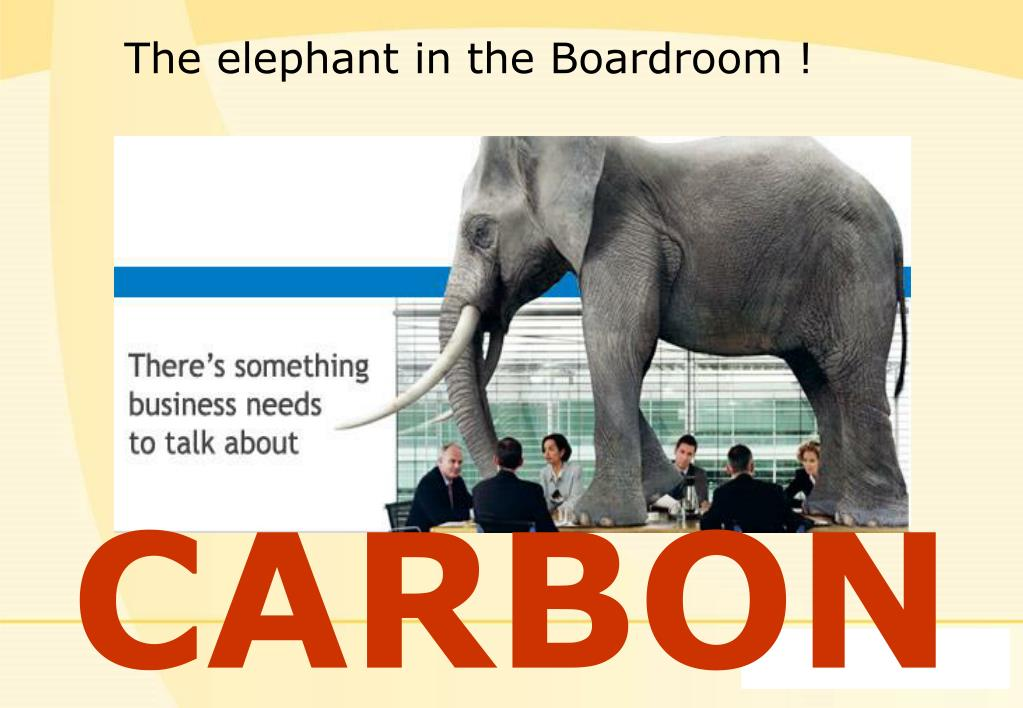 The elephant in the Boardroom !