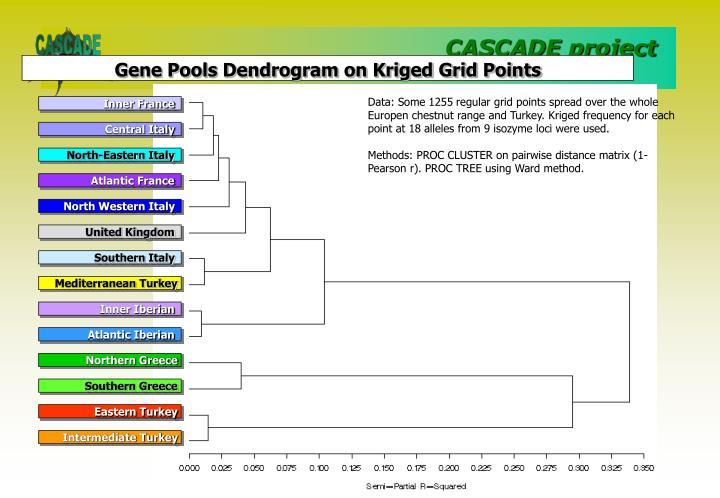 Gene Pools Dendrogram on Kriged Grid Points