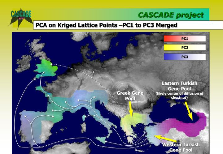 PCA on Kriged Lattice Points –PC1 to PC3 Merged