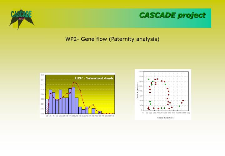WP2- Gene flow (Paternity analysis)