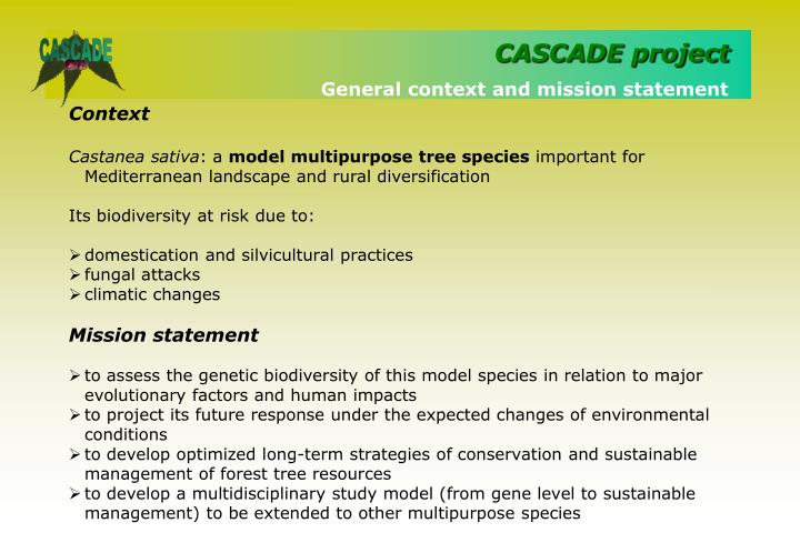 General context and mission statement