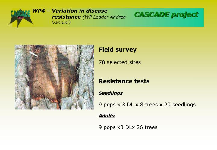 WP4 – Variation in disease resistance