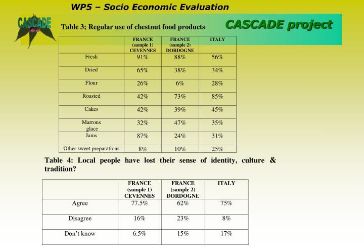 WP5 – Socio Economic Evaluation