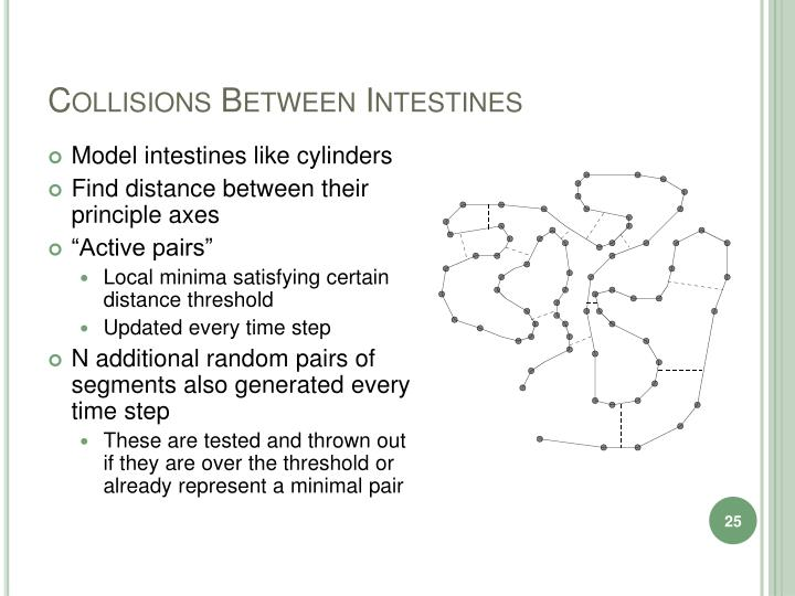 Collisions Between Intestines