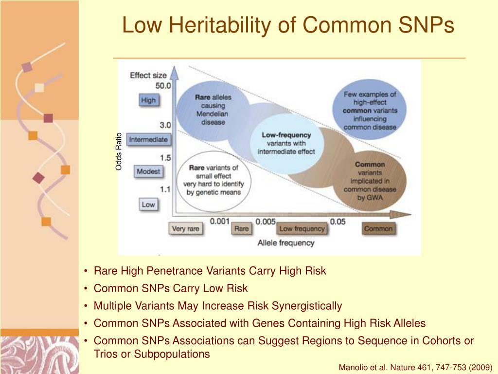 Low Heritability of Common SNPs