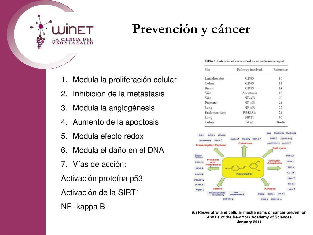 Prevención y cáncer