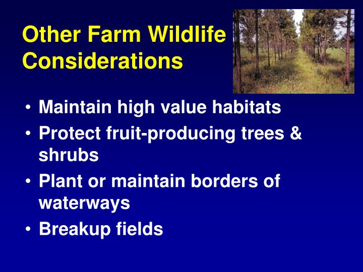 Other Farm Wildlife Considerations
