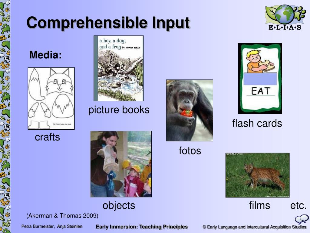 Comprehensible Input