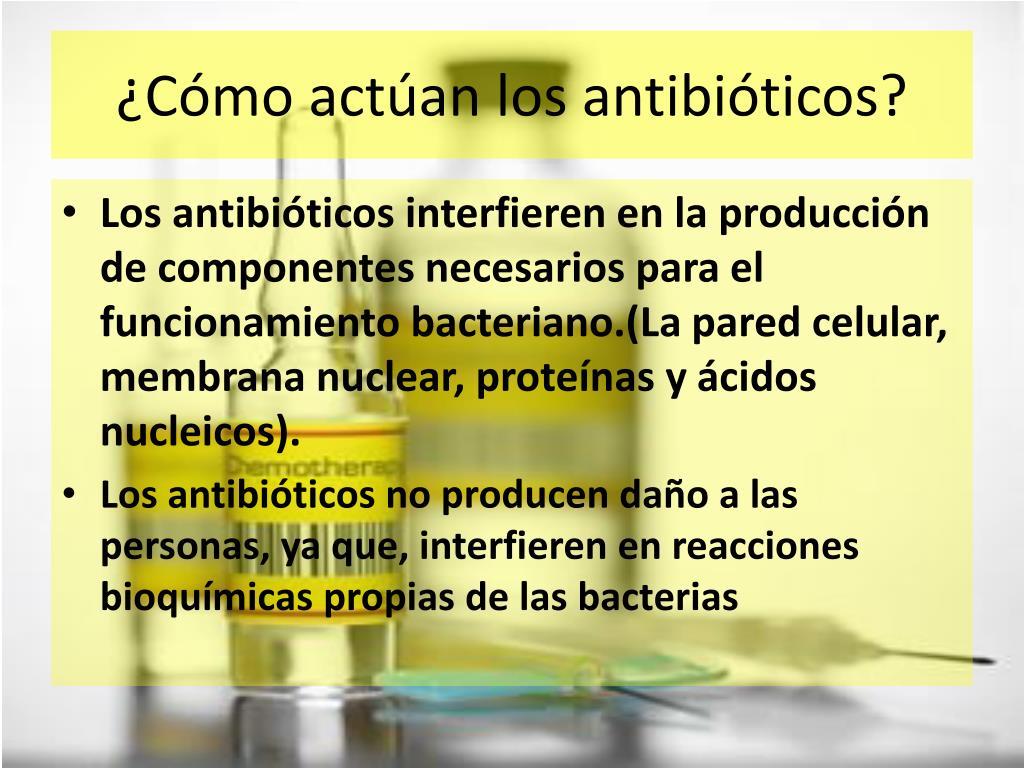 ¿Cómo actúan los antibióticos?
