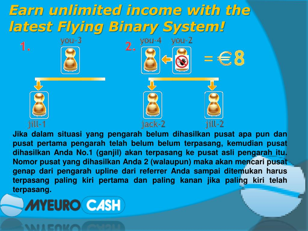 Earn unlimited income with the latest Flying Binary System!