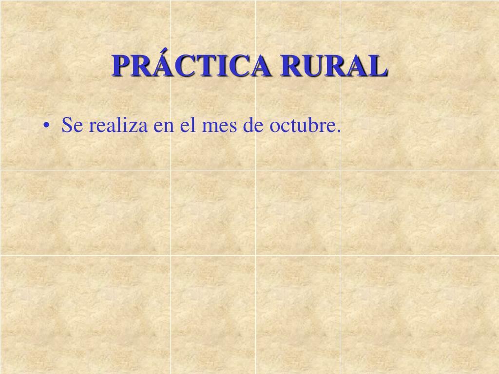 PRÁCTICA RURAL