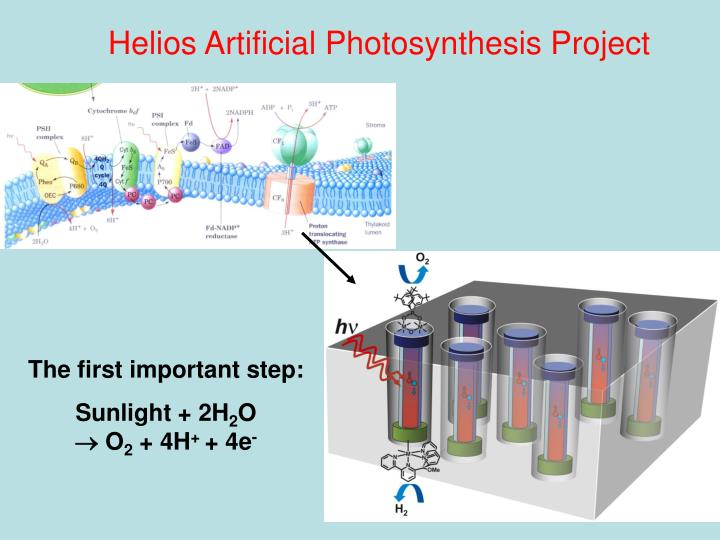 Helios Artificial Photosynthesis Project