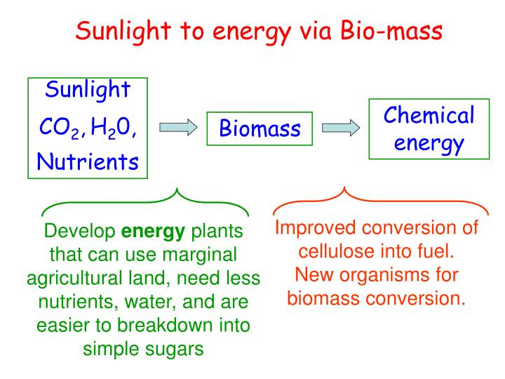 Improved conversion of cellulose into fuel.