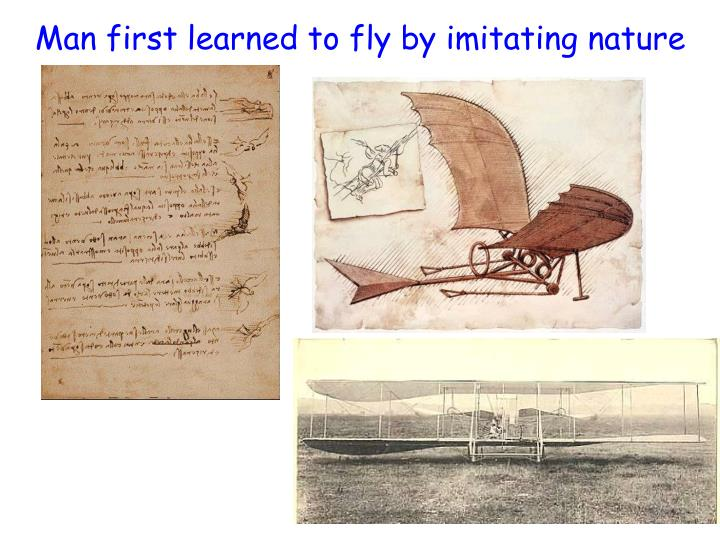 Man first learned to fly by imitating nature