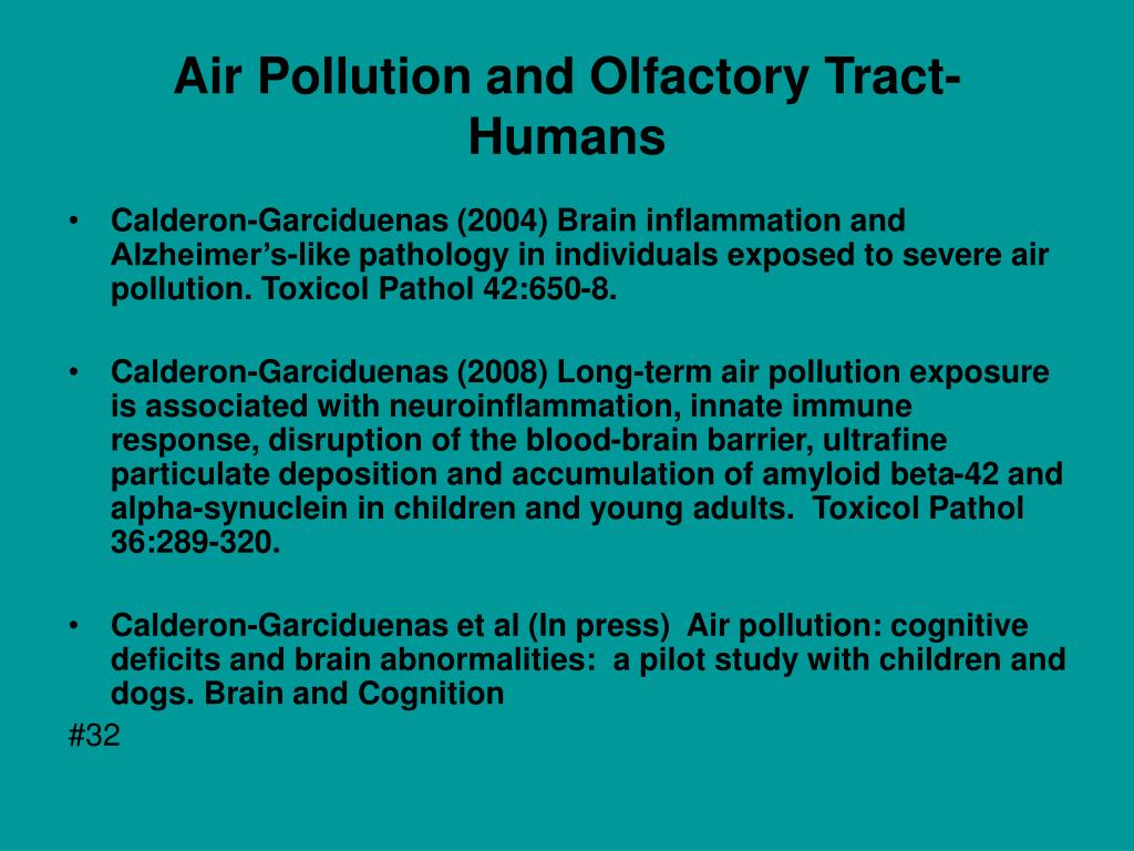 Air Pollution and Olfactory Tract- Humans