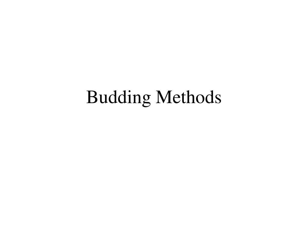 Budding Methods