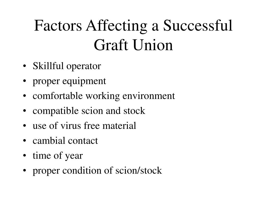 Factors Affecting a Successful Graft Union