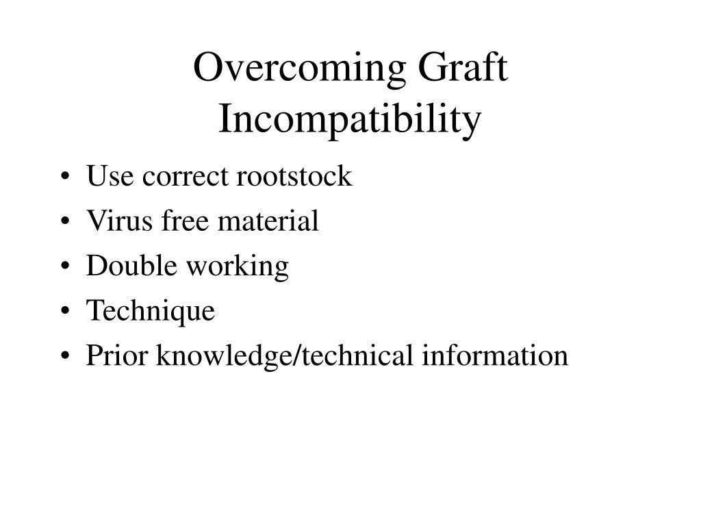 Overcoming Graft Incompatibility