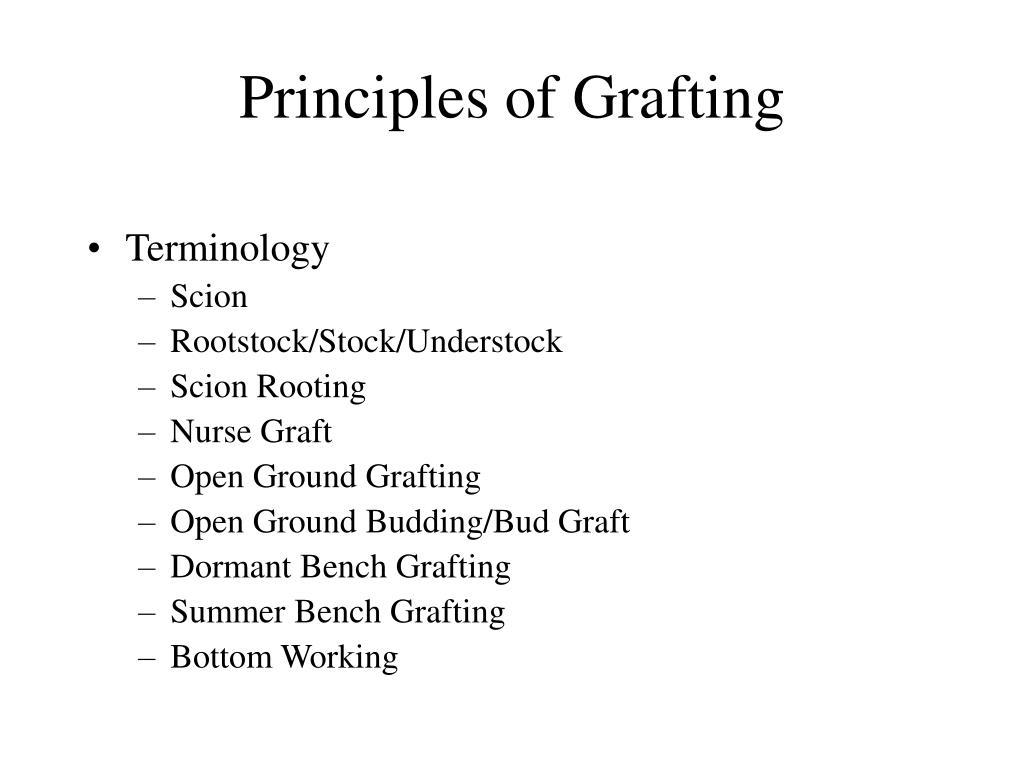 Principles of Grafting