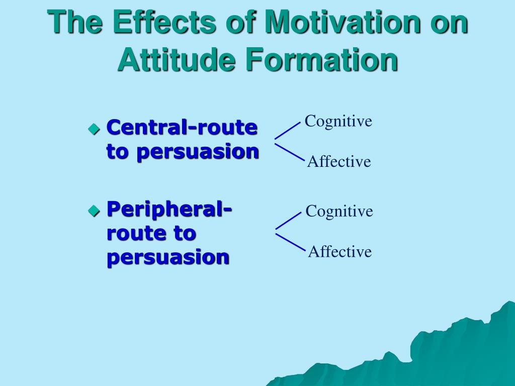 The Effects of Motivation on Attitude Formation